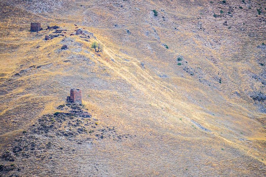 Башни, разбросанные по берегам Алазани. Дорога к Дартло