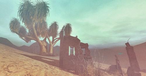 deserted desert