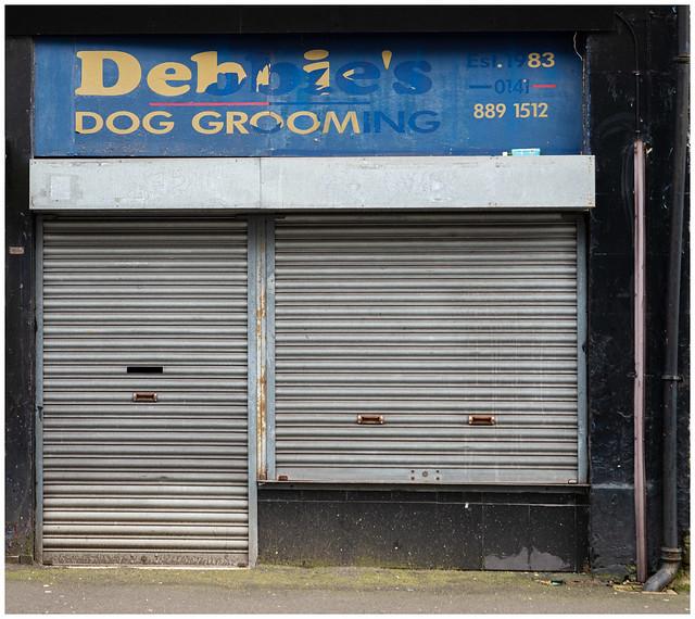 Dog Grooming, Paisley