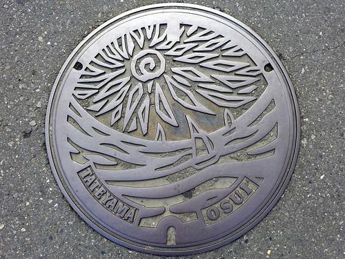 Tateyama Chiba, manhole cover (千葉県館山市のマンホール)