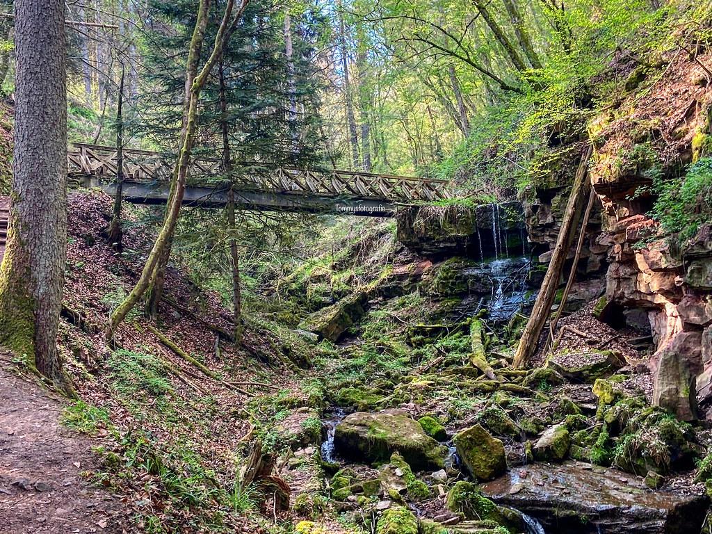 A hike last week with my son.  Photo taken in the Lützenschlucht in Wildberg, Germany