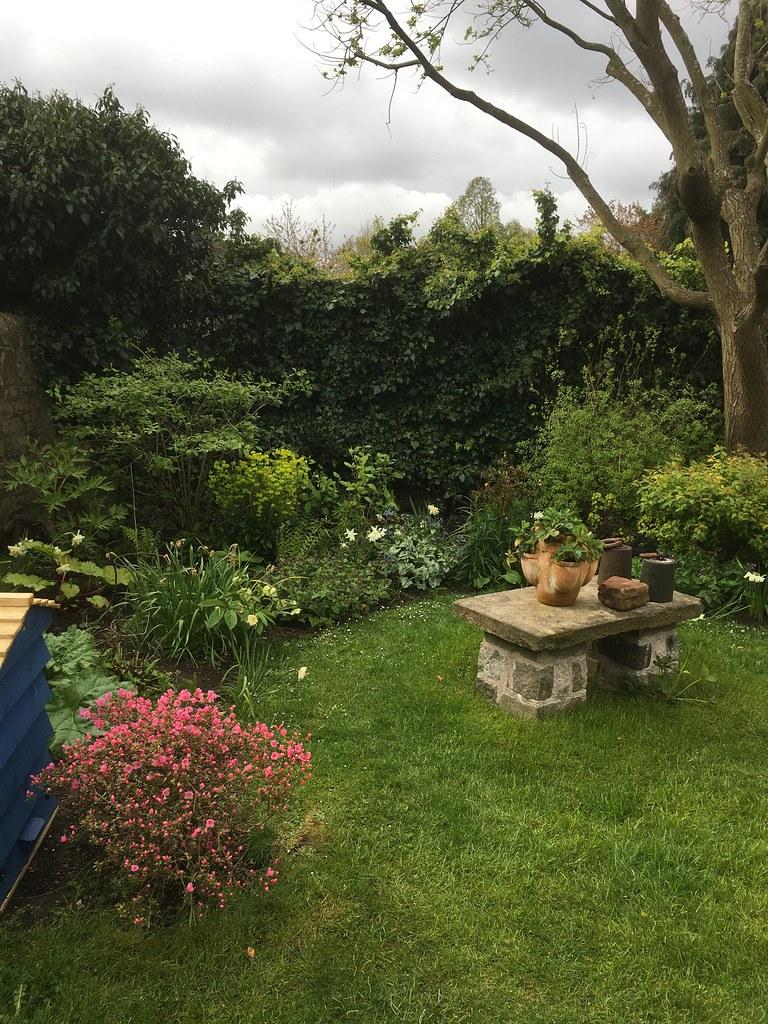 Ravelston garden development 5