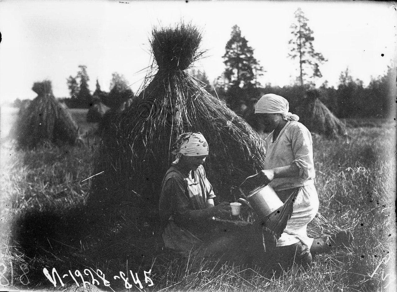 Обед женщин в поле
