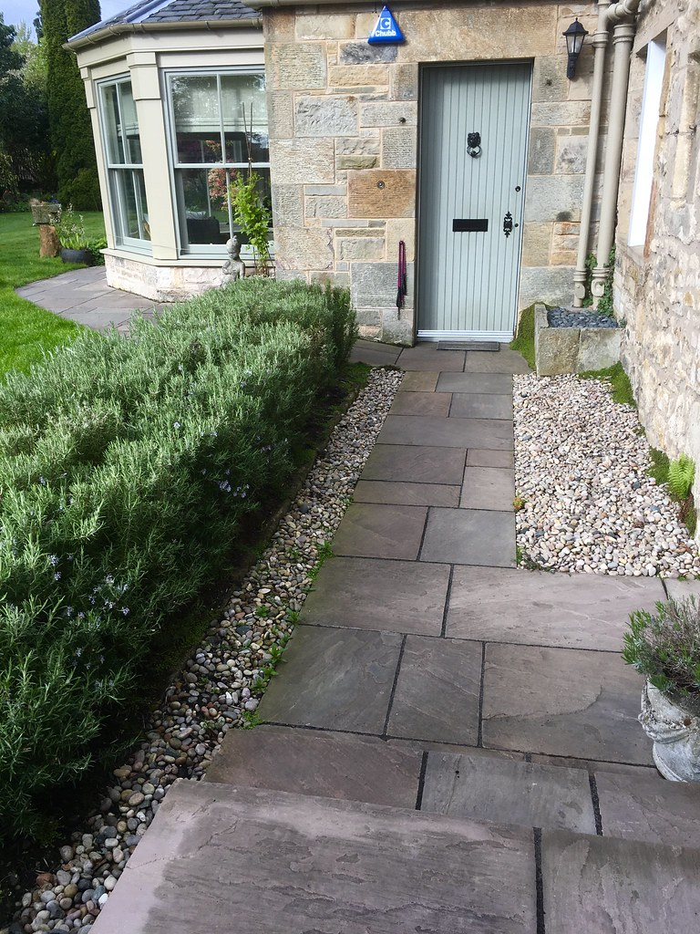 Path side Rosemary hedge