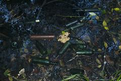 Lixo Brañas 05