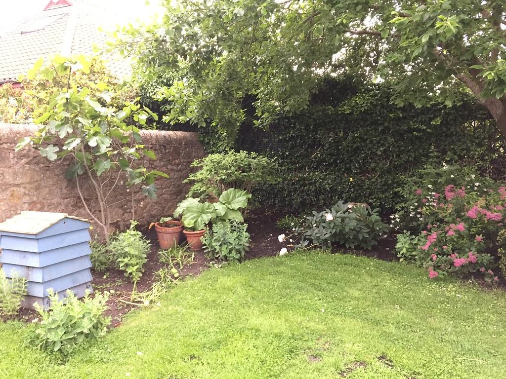 Sahdy corner pre-planting Ravelston