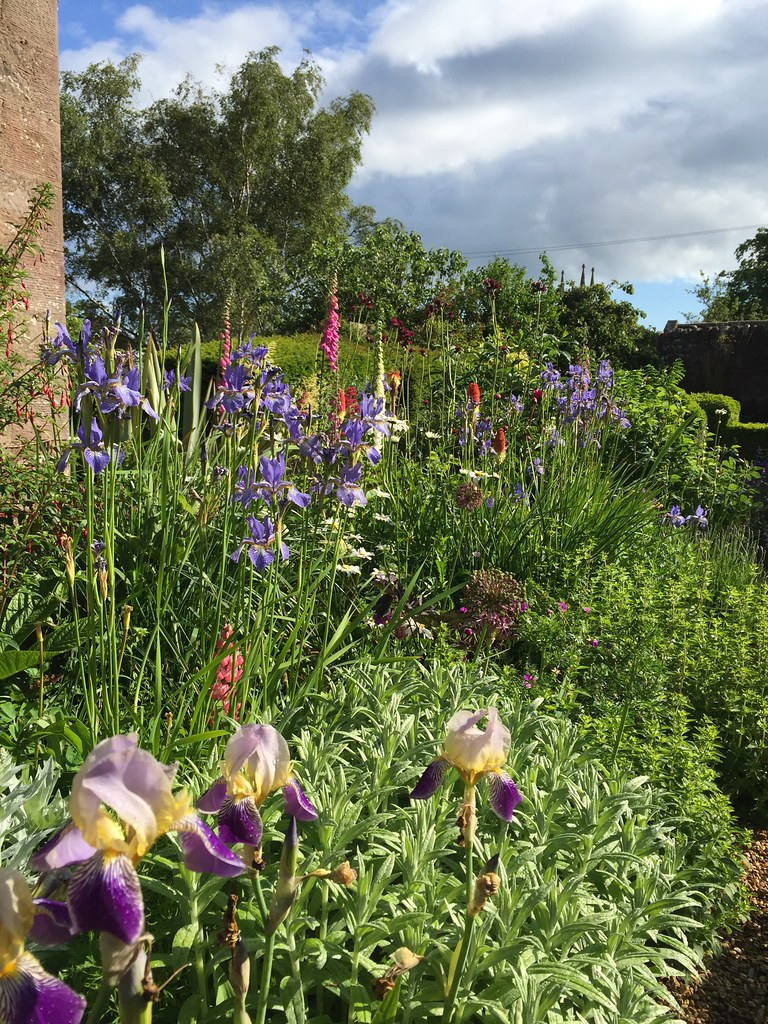 Stenton  late spring garden