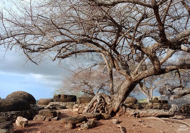 Desa Adat Namata