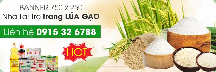 Trang quảng cáo Lúa gạo miền Tây DDBSCL - liên hệ quảng cáo 0915 32 6788