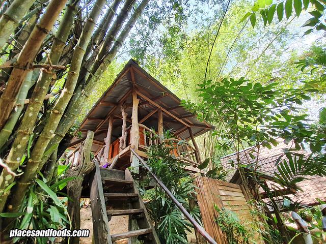 roywan treehouse