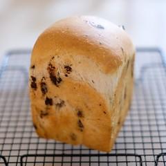 ミント酵母のチョコミント食パン 20200429-DSCT0218 (2)