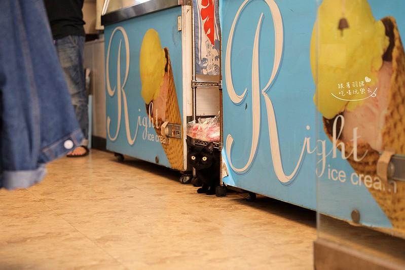 來特冰淇淋台北國父紀念館美食40