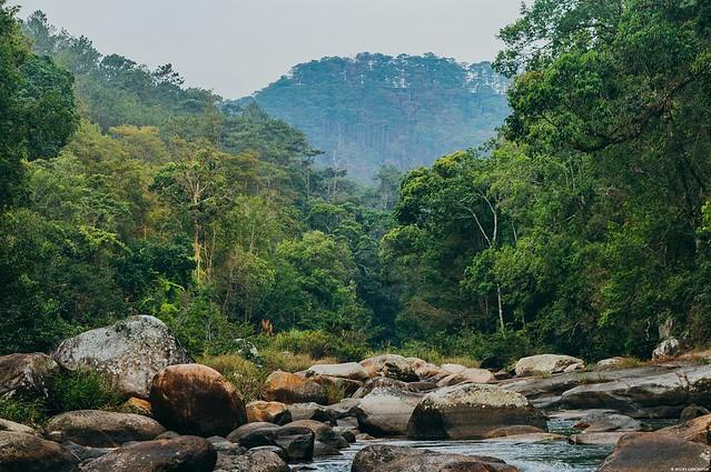 Phượt Hot - Bí kiếp Phượt Đăk Lăk toàn tập – Vẻ đẹp ban mê của núi rừng Tây Nguyên (119)