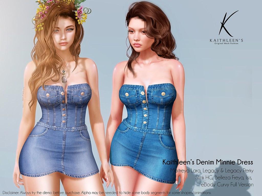 Kaithleen's Denim Minnie Dress Poster  web