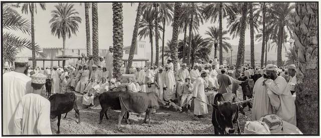 Viehmarkt in Nizwa, Oman 2001