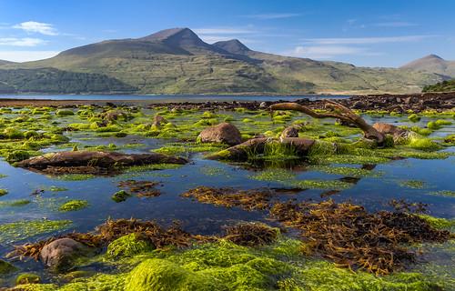 *Isle of Mull coastline*