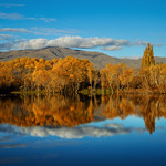 Queenstown Fall Reflection