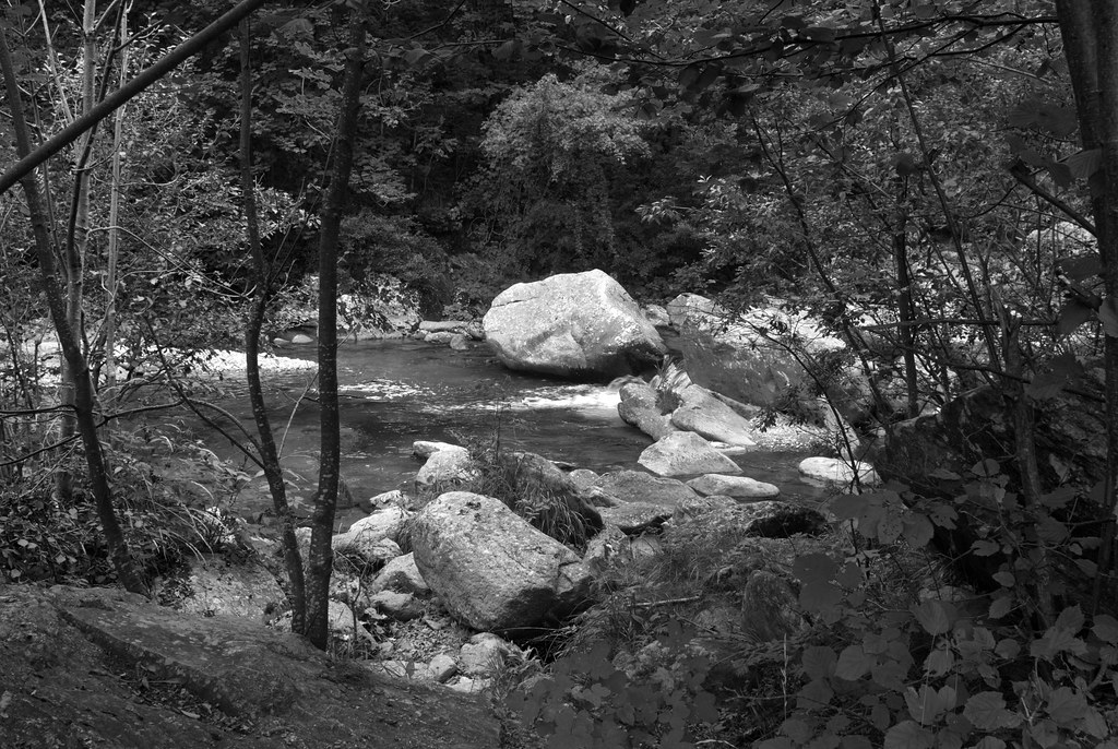 Evening river scene.