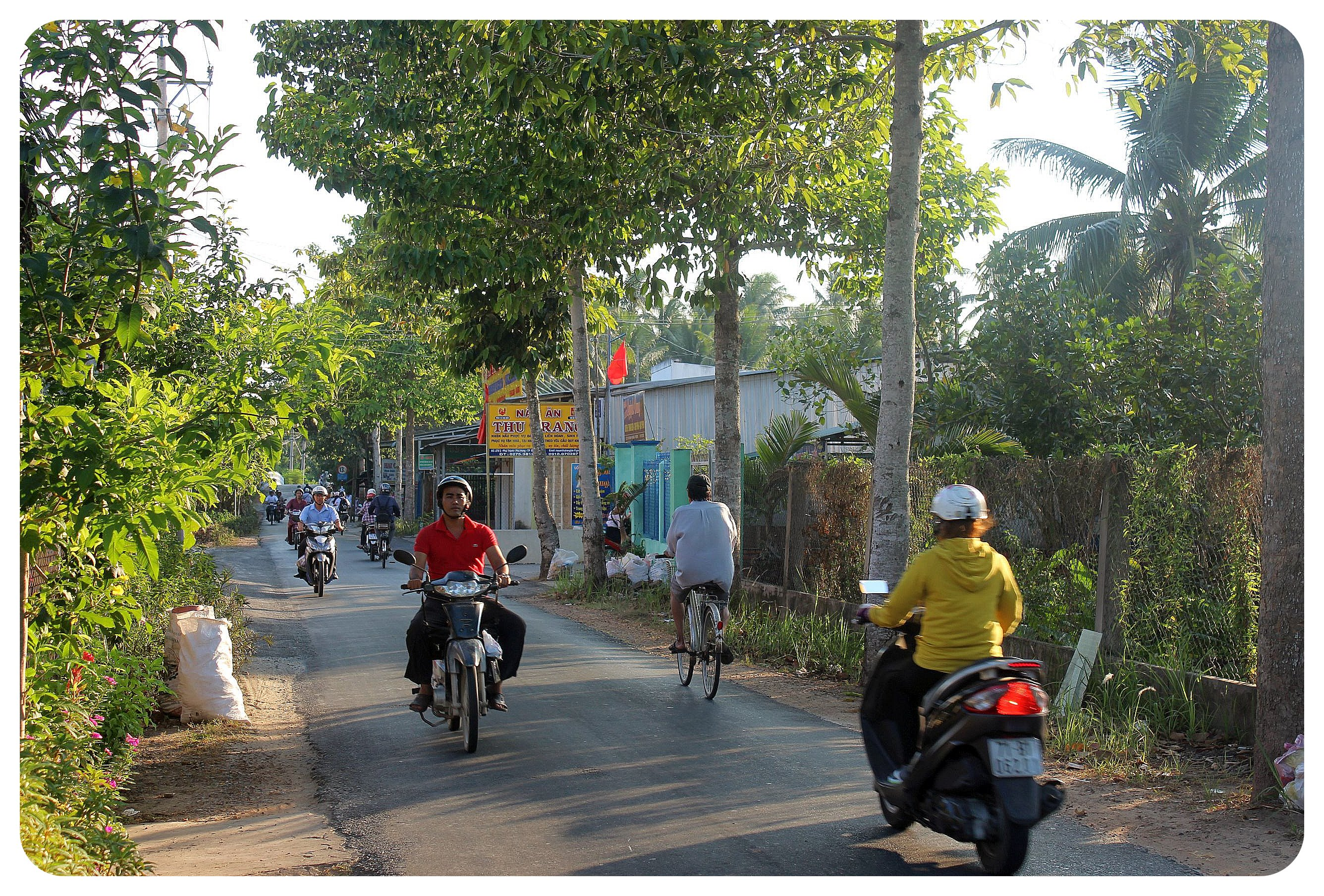 ben tre country road