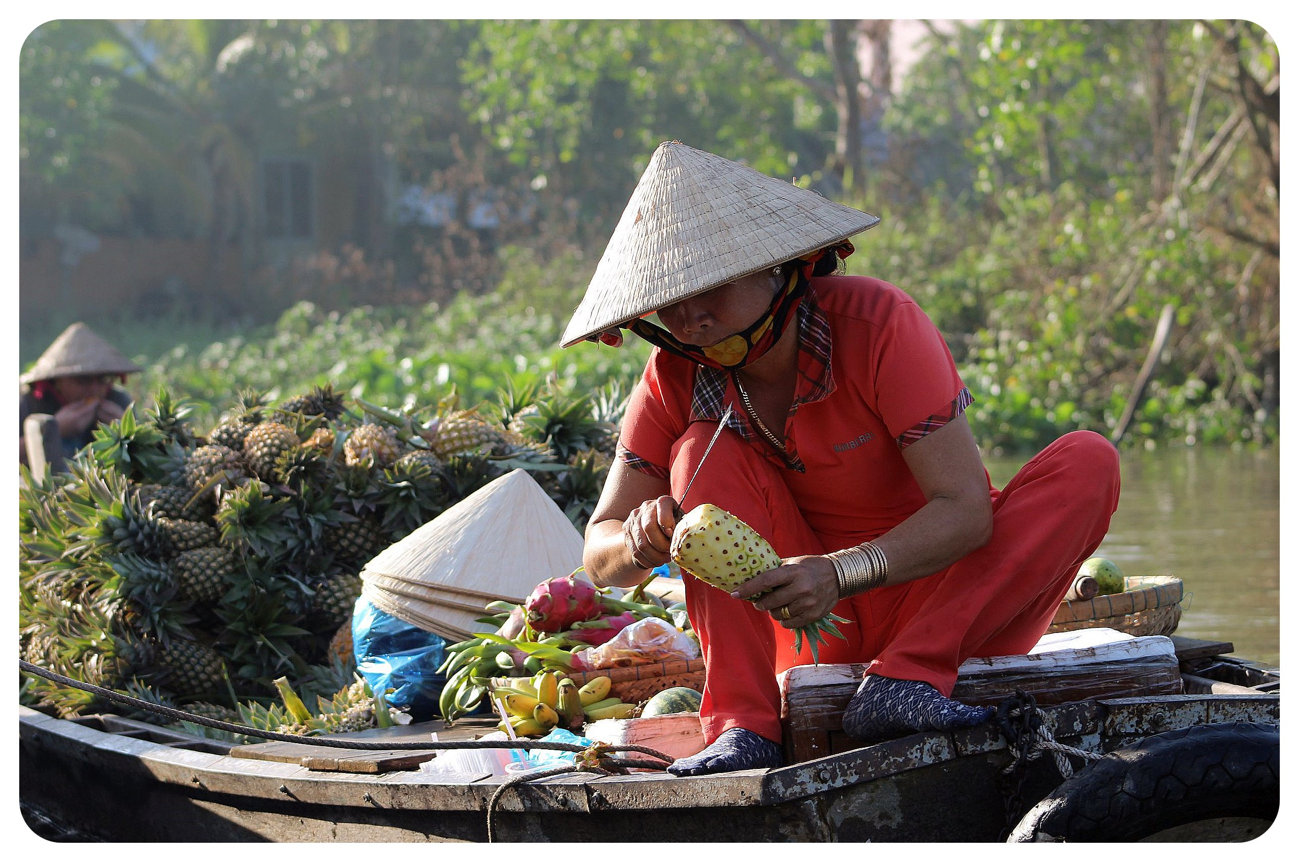 mekong delta pineapple vendors