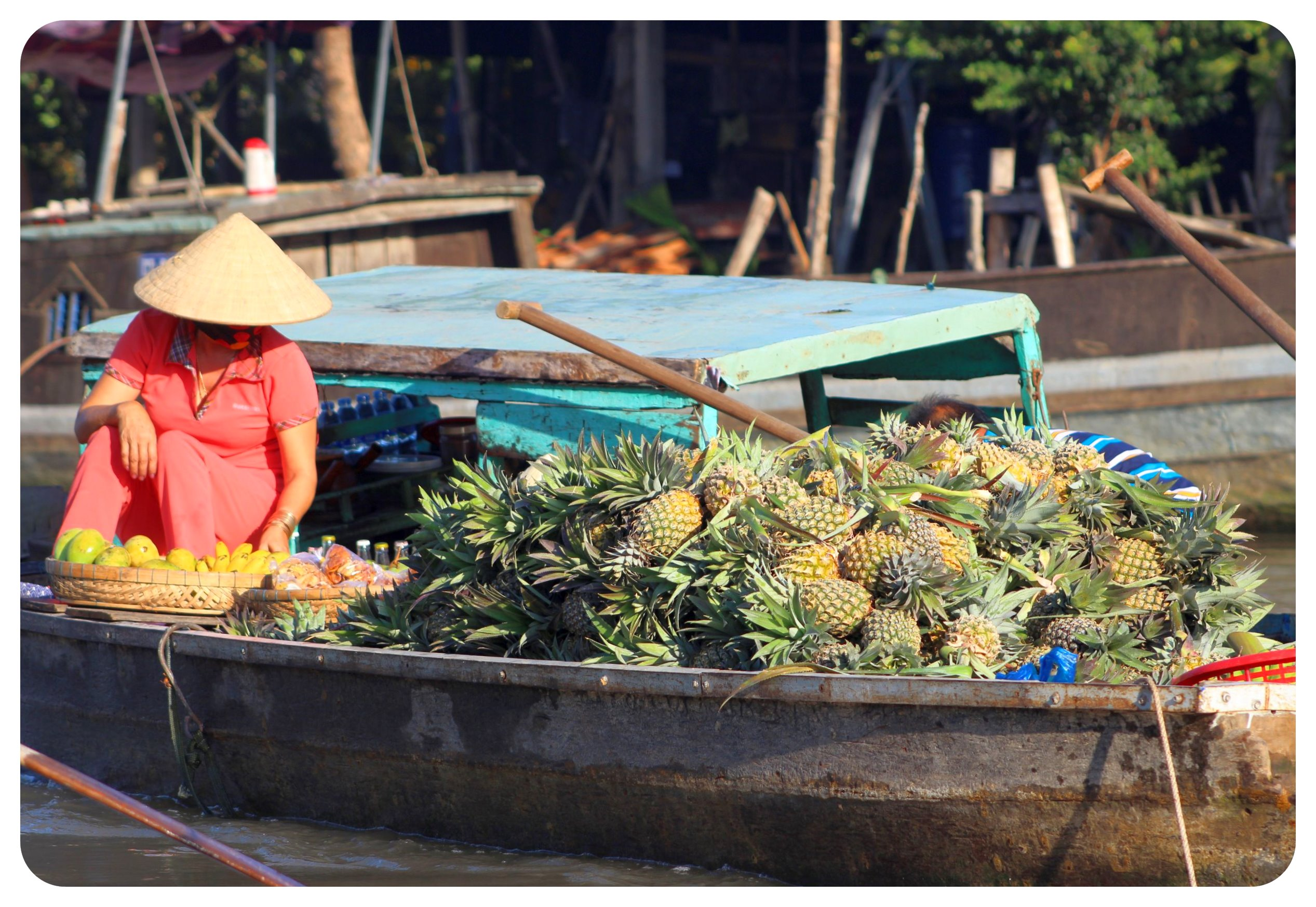 mekong delta floating pineapple vendor
