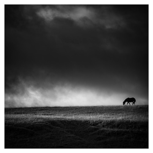 Lone | by vulture labs