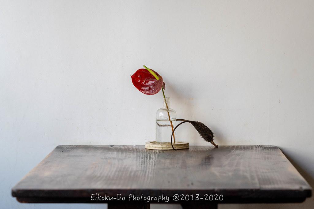 ZED_0715-Edit