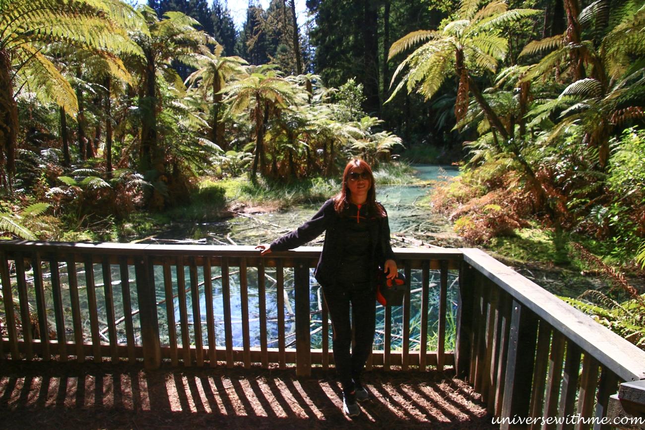 New Zealand Travel_041