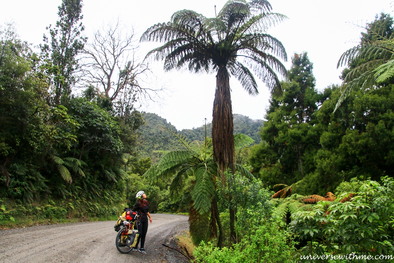 New Zealand Travel_029