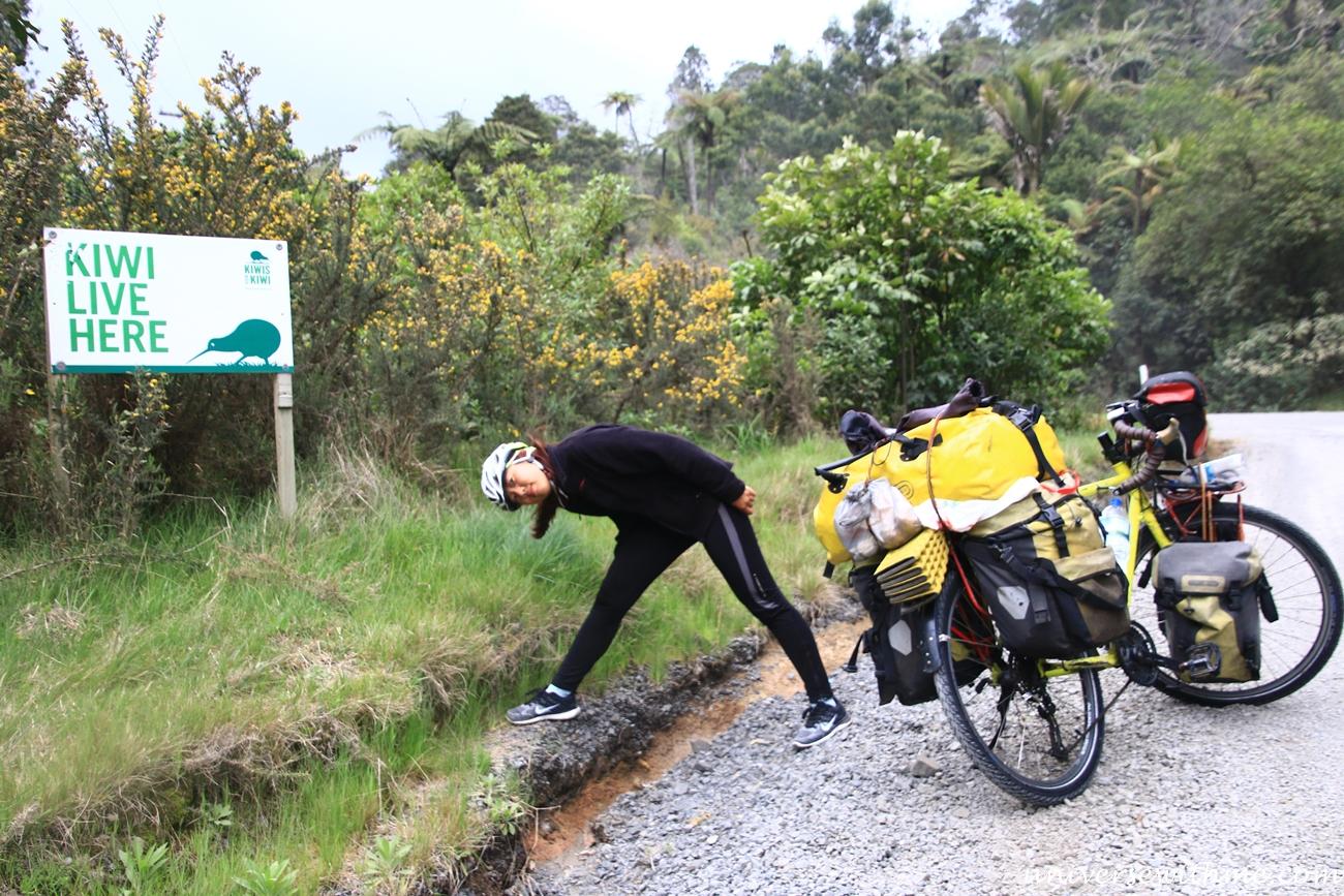 New Zealand Travel_024