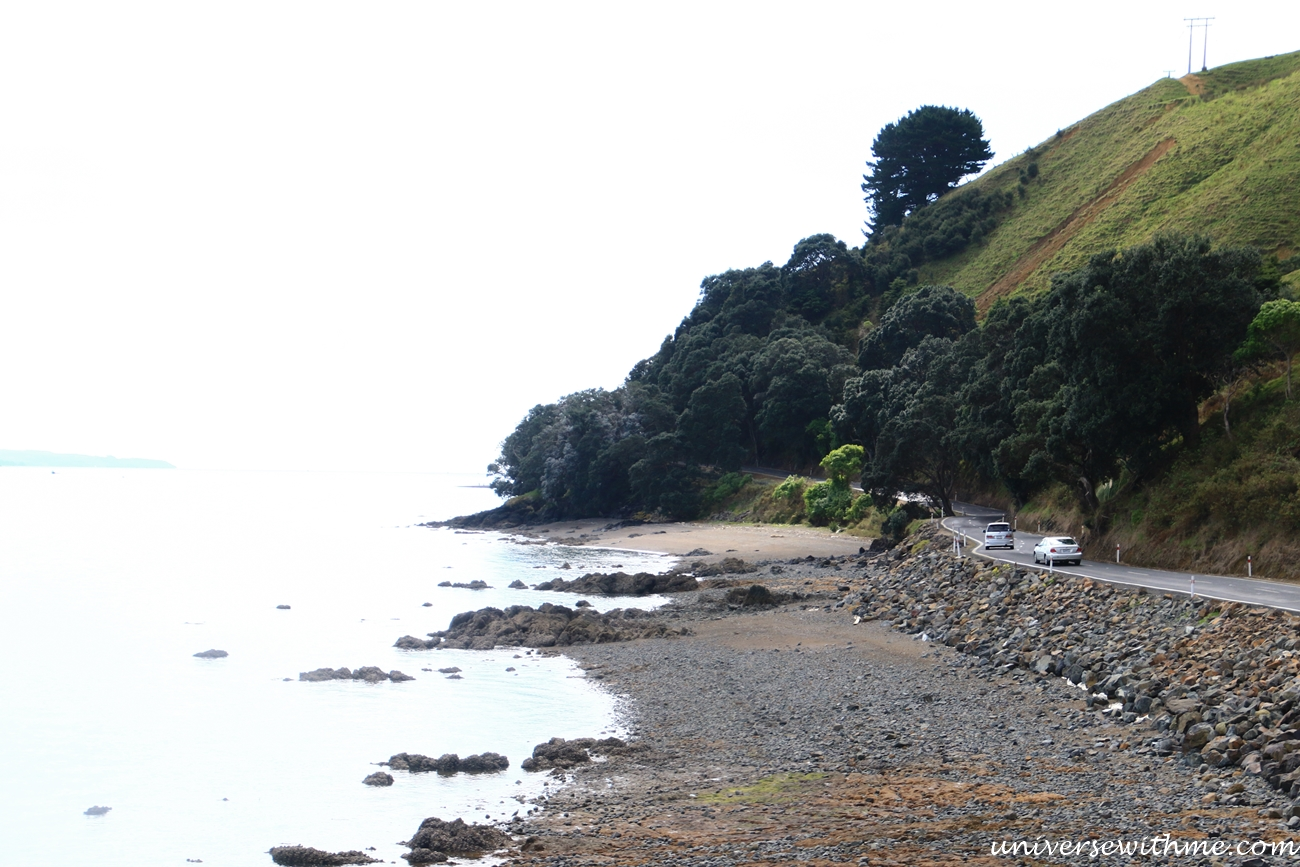 New Zealand Travel_016