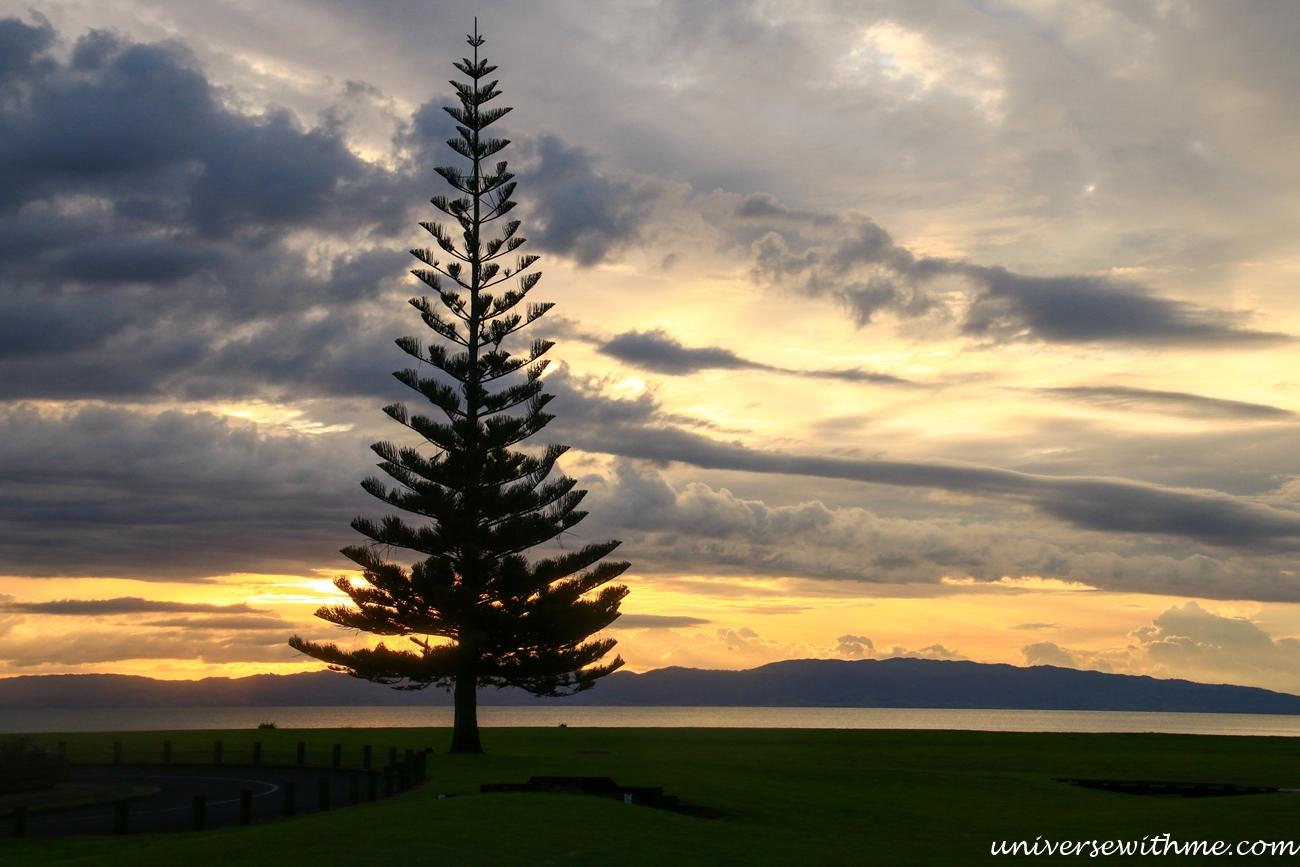 New Zealand Travel_011