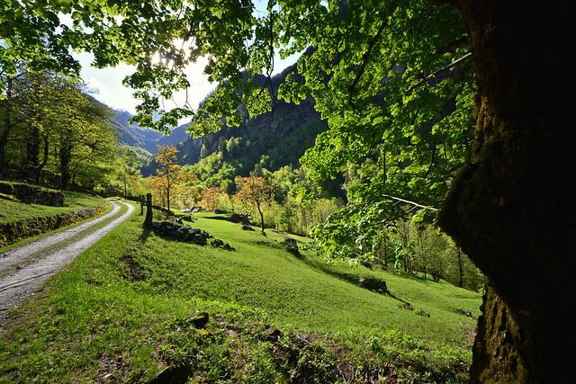 Monte di Predee - Capanna Soveltra