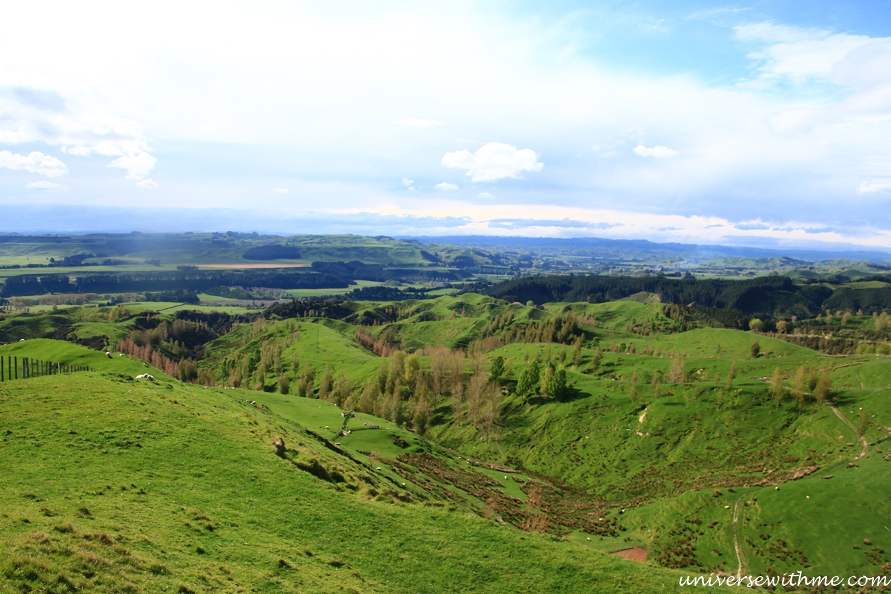 New Zealand Travel_084