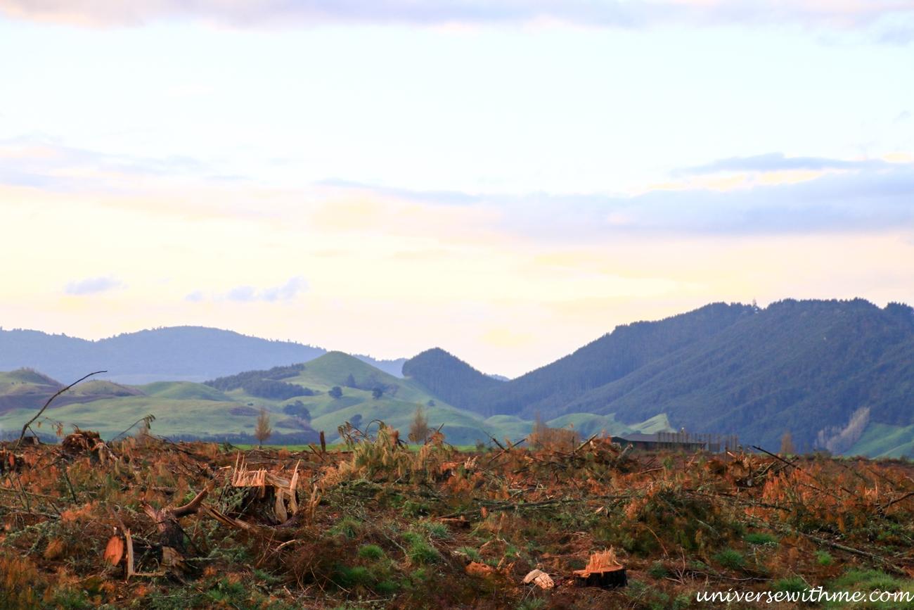 New Zealand Travel_054