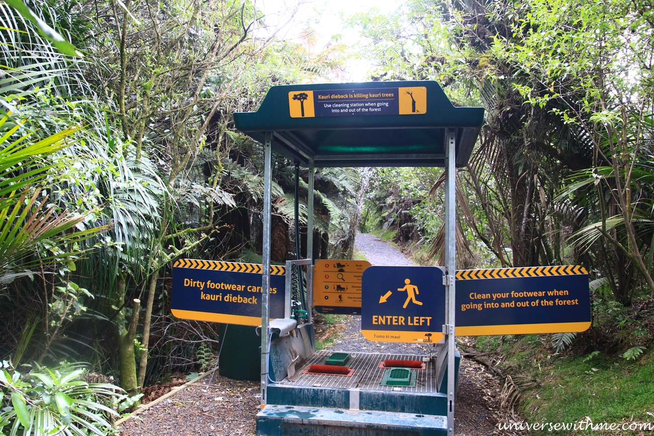 New Zealand Travel_025