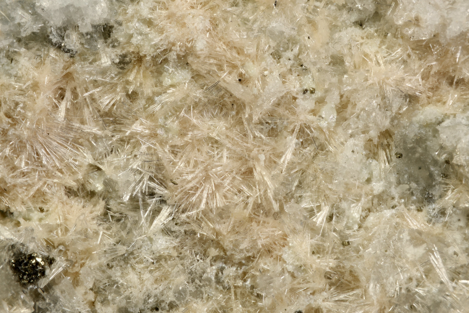単斜灰簾石 / Clinozoisite