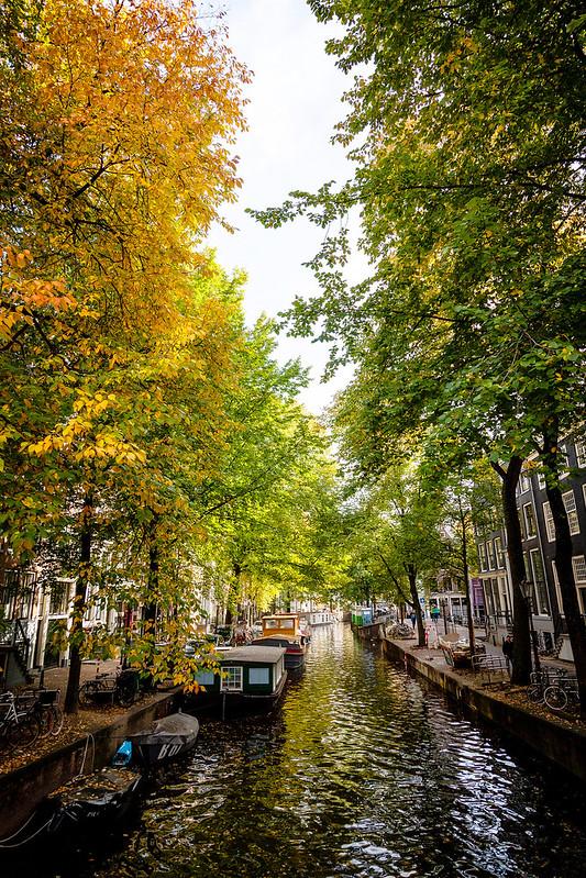 Amsterdam, 2016 #0004