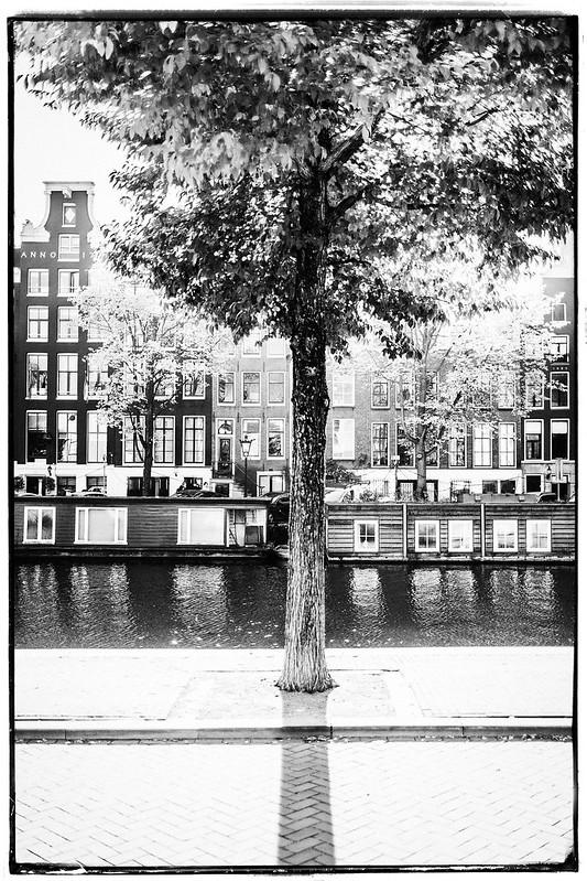 Amsterdam, 2016 #0015