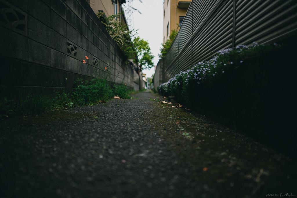 DSC_6949_01