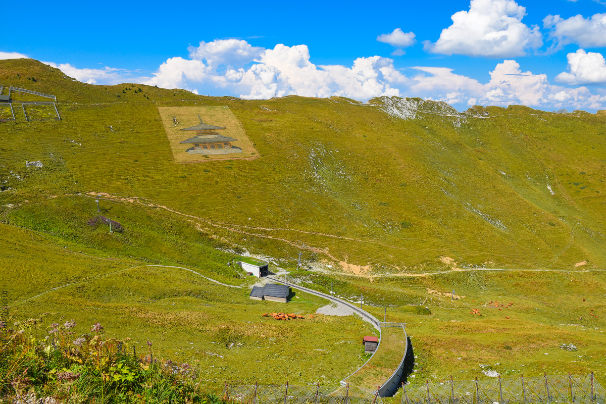 Schweizer-Alpen-(19)