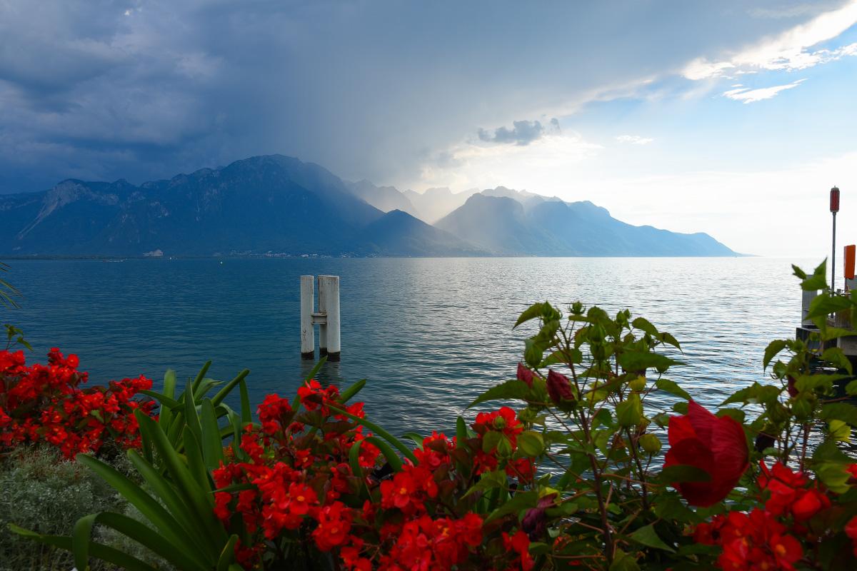 Schweizer-Alpen-(6)