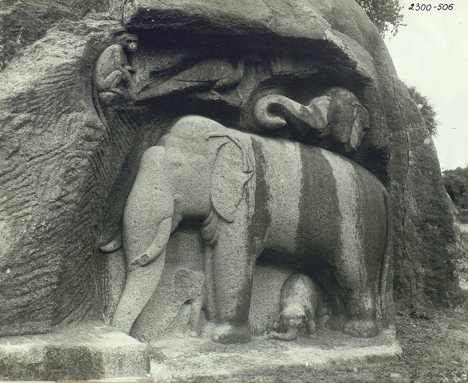 Мамаллапур (деталь рельефа со слонами на скале) (2)