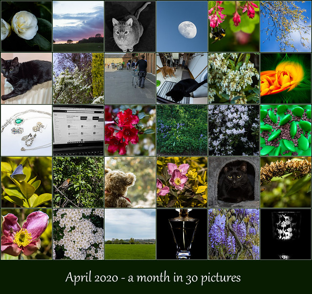 April 2020: a month in 30 pictures