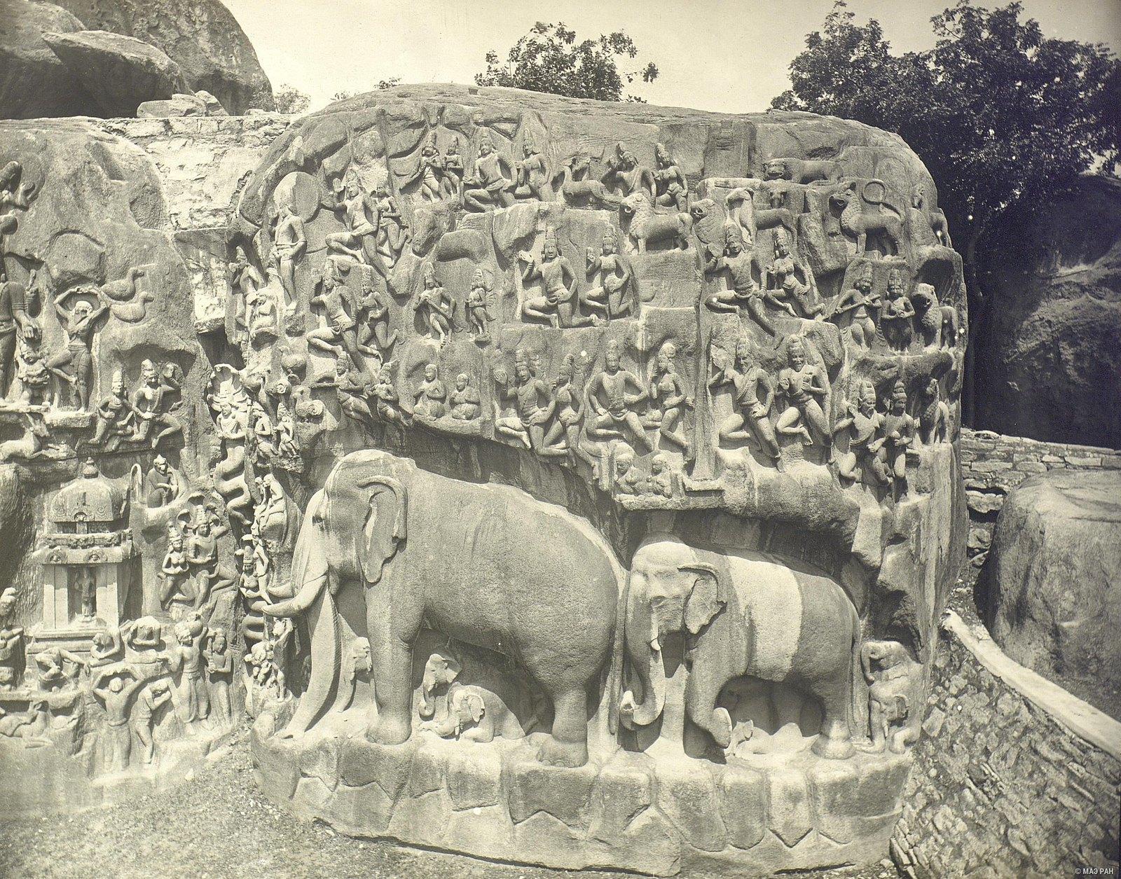 Мамаллапур (деталь рельефа со слонами на скале)