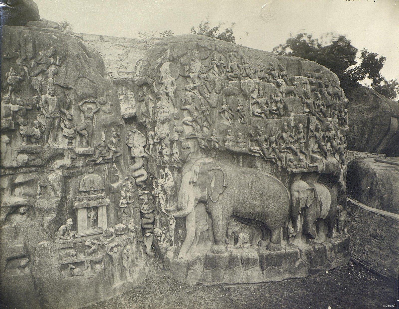 Мамаллапур (деталь рельефа со слонами на скале) (1)