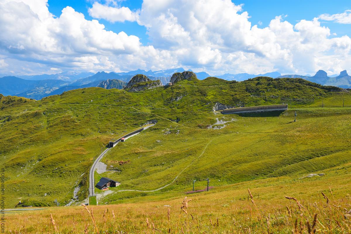 Schweizer-Alpen-(23)