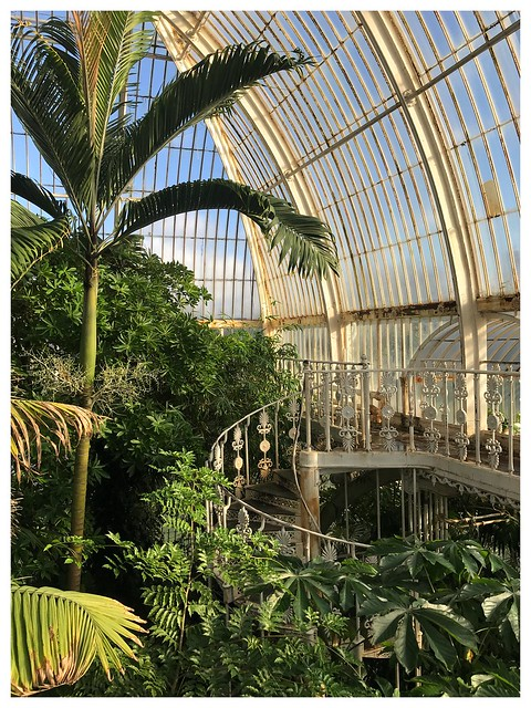Corona Flashback I - Kew Gardens, Palm House