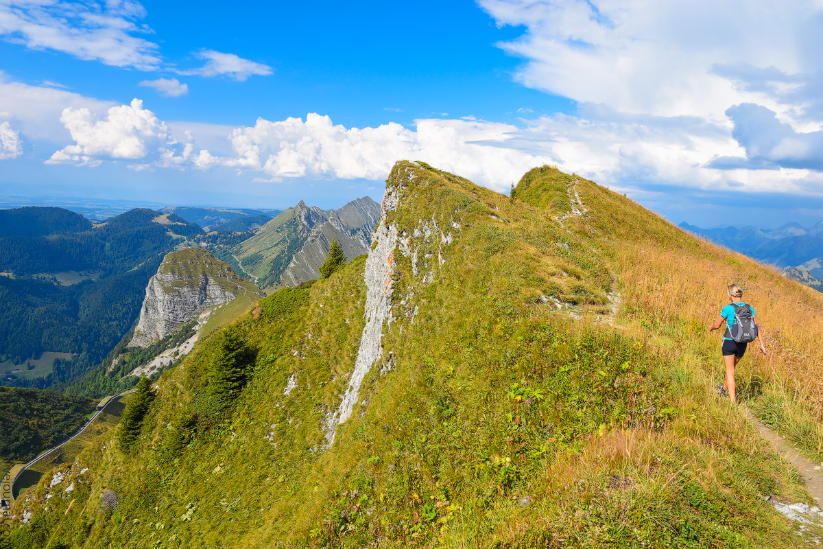 Schweizer-Alpen-(37)