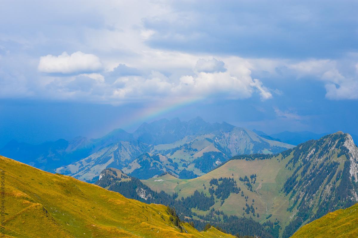 Schweizer-Alpen-(2)